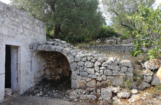 Terreno collinare Ostuni